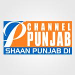 channel punjab logo